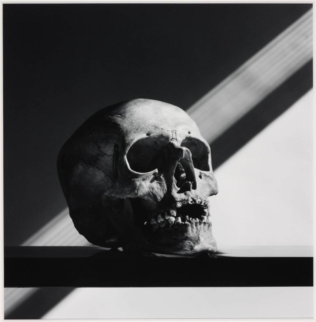 Skull 1988, printed 1990 by Robert Mapplethorpe 1946-1989